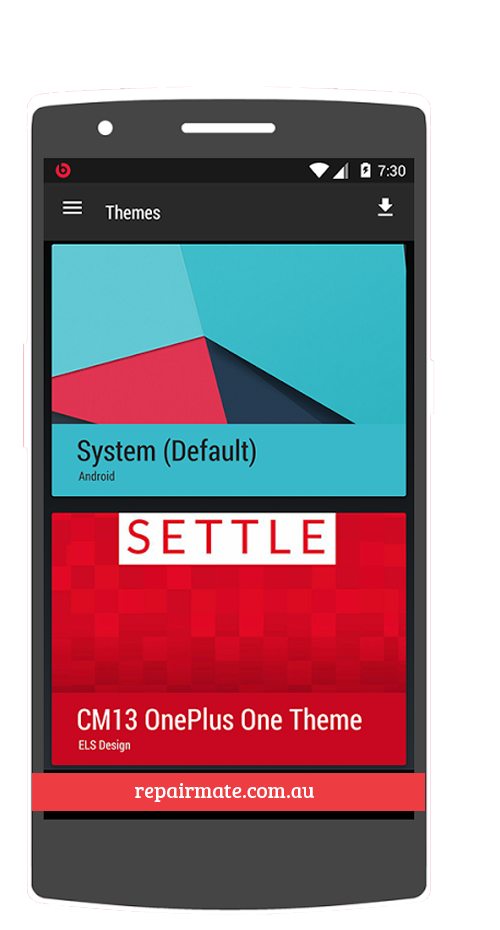 Repair Oneplus 1 (One)